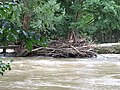 Log jam, Barrett's Mill - geograph.org.uk - 506866.jpg