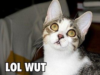 """LOL - A lolcat using """"LOL"""""""