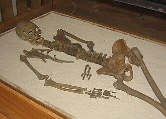 Loschbour man - Skeleton of Loschbour man