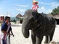 Lovely children in Bang Tao Beach, Sheraton Grande Laguna Phuket - panoramio.jpg