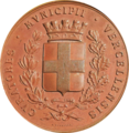 Luigi Bruzza medaglia 2.png