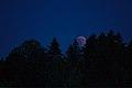 Lunar Eclipse 2018 SG 005 (42791003275).jpg