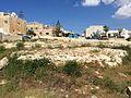 Mġarr cart ruts 03.jpg