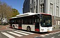 MAN Lion's City CNG, HTMbuzz, The Hague (2019).jpg