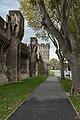 MK53769 Ramparts of Avignon.jpg