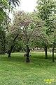 Madrid- Parque del Buen Retiro (34066328440).jpg