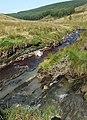 Maesnant meets the Afon Tywi near Drum Nantyrhelyg, Powys - geograph.org.uk - 1571524.jpg
