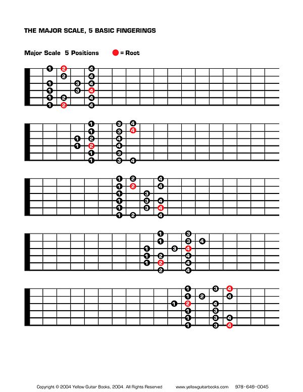 Major Scale positions.jpg