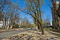 Maly Fontan, Odessa, Odessa Oblast, Ukraine - panoramio (10).jpg