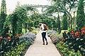 Man walking through a garden (Unsplash).jpg