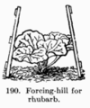 Manual of Gardening fig190.png