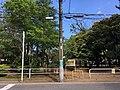 Matsudo Yamabuki koen.jpg