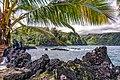 Maui (207414189).jpeg