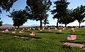 Memorial Day (3564192348).jpg
