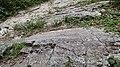 Migmatitos na trilha em torno da Cachoeira Paraíso. - panoramio.jpg