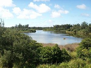 大池 所在地  沖縄県