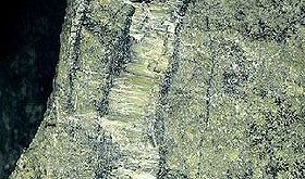 Serpentinite a crisotilo