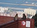 Monkeys enjoying the view - panoramio.jpg