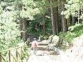 Monte Cocuzzo Sentiero attrezzato - panoramio.jpg