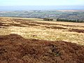 Moorland near Watson's Well - geograph.org.uk - 392299.jpg