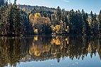 Moosburg Mitterteich Herbststimmung 18102017 5687.jpg
