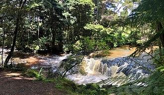 Morrinsville - Waterfall on the Waitakaruru Stream, beside the Morrinsville River Walk