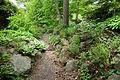Morris Arboretum - DSC00329.JPG