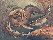 Mosasaurus ichthyosaurus.jpg