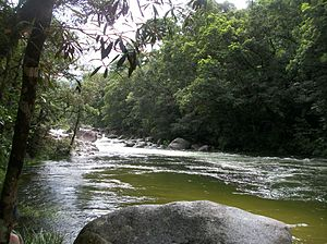 Daintree National Park - Mossman River and Gorge