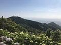 Mount Gongenyama from top of Mount Sarakurayama.jpg