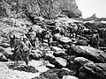 Mule handlers of the Royal Indian Army Service Corps negotiate rocky terrain while on exercise in the UK, 16 November 1940. H5568.jpg
