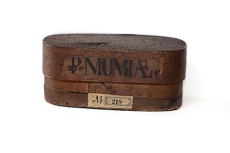 Mummia in a box