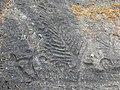 Munkedal Lökeberg foss 6-1 ID 10154500060001 IMG 0345.JPG