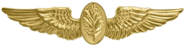Navy Flight Nurse Badge