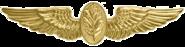 Navy Flight Nurse Badge