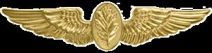 Flight Nurse Badge - Navy Flight Nurse Insignia