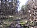 Near Linnamäe Hydroelectric Power Plant - panoramio.jpg