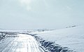 Nome-Council Highway.jpg