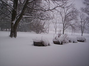 Blowing snow and snowdrifts in a back yard res...