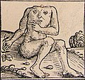 Nuremberg chronicles - Strange People - Headless (XIIr).jpg