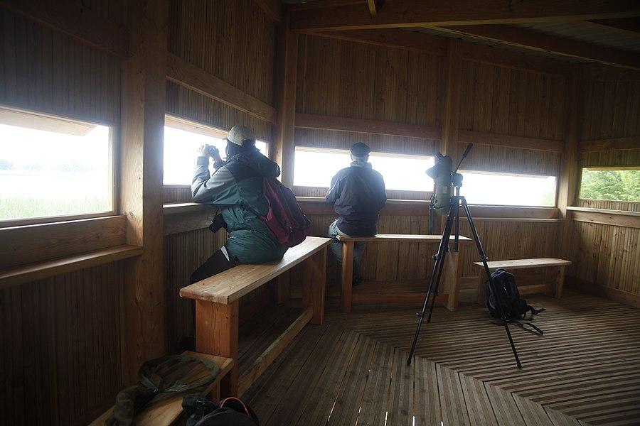 Observatoire ornithologique au sud de l'étang de Lachaussée.