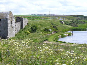 Thorfinn Torf-Einarsson - The old watermill and mill pond at Ham, Caithness