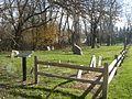 Old Settlers Cemetery Am Rev PB140064.jpg