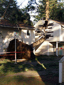 Storm Damage At An Olympia Washington Apartment Complex