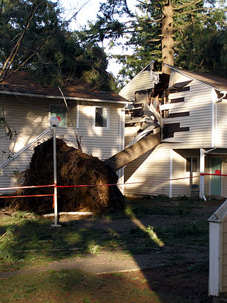 Hanukkah Eve windstorm of 2006 - Storm damage at an Olympia, Washington apartment complex.