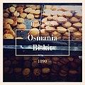 Osmania biscuits.jpg