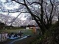 Otawara Castle in spring.jpg