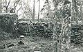 Otrala 1955, Tauno Häkli 1.jpg