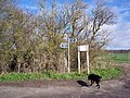 Ox Drove and bridleway junction near Barford St Martin - geograph.org.uk - 350570.jpg