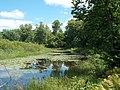 Oxbow pond - panoramio.jpg